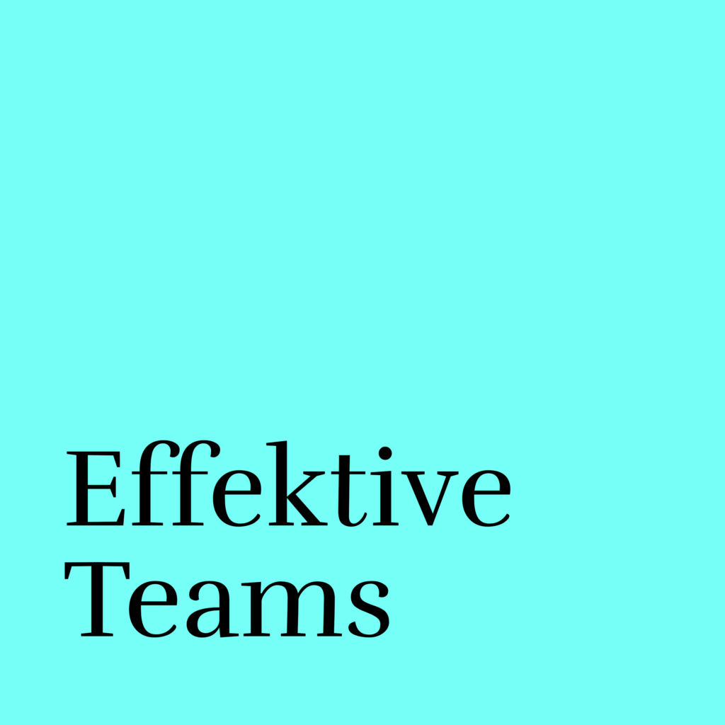 effektive teams neu